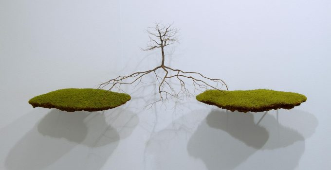Tree Sculptures by Jorge Mayet